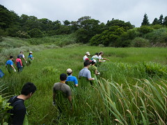 徜徉在自然中工作,即使工作再累,志工們也感到心情放鬆。