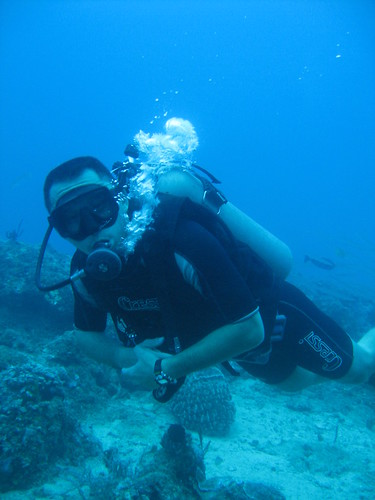 diving photo & video 015