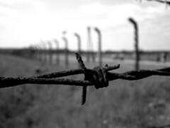 Filo (IN@DD PHOTO GUESS) Tags: e di campo auschwitz bianco nero polonia terrore percorso olocausto concentramento