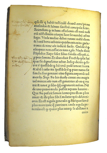 Marginal annotations from Michael Scotus: Liber physiognomiae