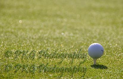 The ball,golf