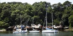 Douarnenez_20100620_051-2 (bourjean29) Tags: mer france port canon bretagne bateaux canon5d voile douarnenez pêche finistere jeanbourgeois