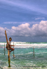 Stick - Fisherman (dawey [Mohammad Alhameed]) Tags: city travel 20d women asia asien canon20d srilanka ceylon usm dslr mohammad familytrip sandisk eos20d compactflash sirlanka voluntary  yousef mohamad picturecollection conon vwc flickrsbest   conon20d dawey kvwc kuwaitvoluntaryworkcenter  photovwc kuwaitvwc
