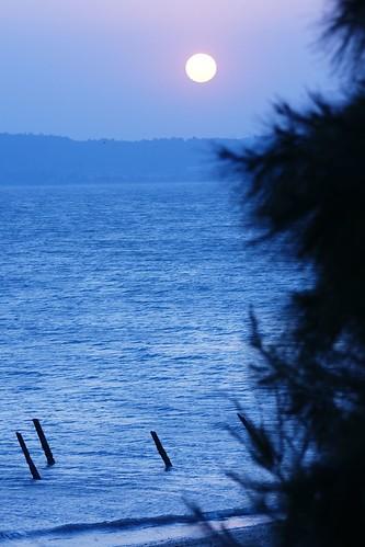 Panpan TW 拍攝的 03-慈湖-05-落日-08。