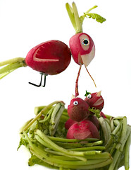Radish Cardinal (RR) Tags: food plant playing cute bird art fun babies with nest cardinal room humor going vegetable ave p ina root northern edible radish anthropomorphic rettich playingwithfood radis anthropomorph rbano turp rabanete antropomrfico partofthe antropomorfico anthropomorphe insidemy nowiam toraisethem minifrigobar spreadhumorcoalition brincandocomacomidablog