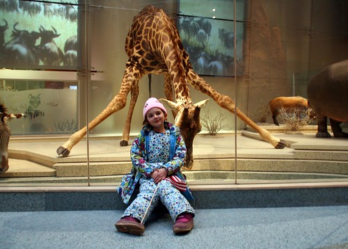 annie and a giraffe at the natural history museum