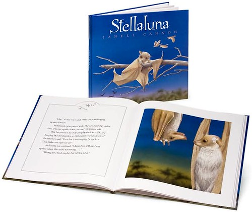 Top 100 Picture Books #71: Stellaluna by Janell Cannon