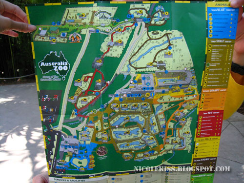 Old Australia Zoo Map.Nicolekiss Travel Lifestyle Blogger Australia Zoo Steve