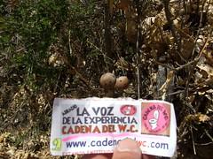HASTA LOS HUEVOS (algarrobo_110) Tags: water del de la el dia voz cojones experiencia cadena trabajador demente ovarios guevos arradio