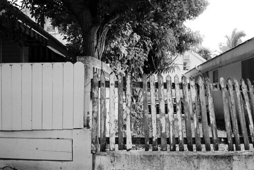 Gray Picket Fence