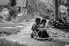 tea community (jasonlouphotography) Tags: bw cameronhighlands sgpalas