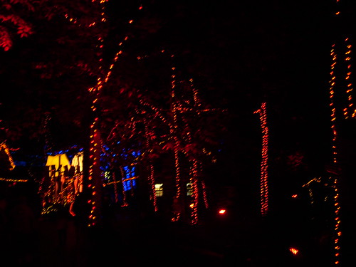 Cedar Point - Starlight Experience Fall