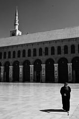 Syria (Korim S. Loup) Tags: arabia syria damascus damas siria  damaskus syrien syrie damasco arabien arabie  umayyadmosque omayyadenmoschee virela gardela virela2 gardela2 virela3 virela4 virela5 virela6 virela7 virela8 virela9 virela10
