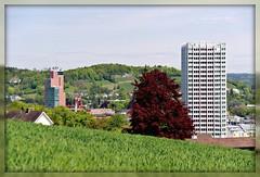 Sulzer Building (masterjack.roger) Tags: building tree forest hills birch picnik hochhaus sulzer goldenberg postgebude rotbuche