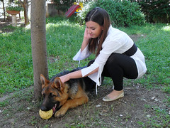 The King and the Queen (BarbaraConte) Tags: italy dog brown girl beautiful look fashion cane shirt hair donna outfit italian king style barbara german brunette germanshepherd prada alsatian bruna leggings ragazza capelli mora conte mise femmina dorothyperkins castana longshirt alsatianshepherd anawesomeshot barbaraconte