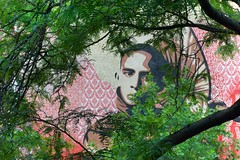 filtered devotion (bytegirl24) Tags: nyc newyorkcity trees streetart tree collage les mural manhattan lowereastside parasol thebowery shepardfairy