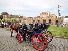 A Horse Carriage seen in Rome, Italy (williamcho) Tags: travel vacation italy holiday rome photoshop worship johnpaulii religion churches placesofworship prayers catholics digitalenhancement topazlabadjust williamcho sonydscwx1 patrickcheah beautificationceremony