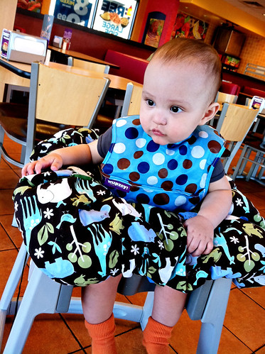 Practical Designs Shopping Cart Cover Review