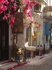 Bicycle among the bougainvillea (Gregelope) Tags: street flowers colour beautiful bicycle textures greece doorways ellada