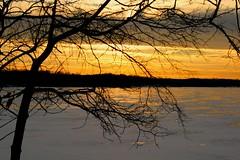 North Lake (Kathy~) Tags: winter sunset snow reflection tree ice silhouette hp chelsea michigan cw fc frozenlake northlake lakescape pfogold pfosilver challengew