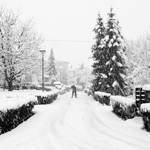 road (by denis.volk)