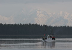 Situk River, Alaska