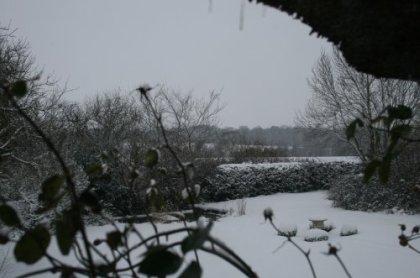 snowmorningblogfeb09