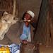 Feed the hyaena: hey, not too close