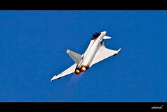 Eurofighter Typhoon (saternal) Tags: india eurofighter 2009 soe typhoon aero eurofightertyphoon abigfave platinumphoto anawesomeshot citrit theunforgettablepictures theperfectphotographer saternal goldstaraward rubyphotographer aeroindia2009