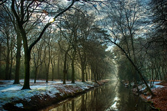 Winter Lane - Episode 2 (Allard One) Tags: winter holland nature netherlands landscape nikon path nederland explore lane serenity bergen fp frontpage 2009 hdr gettyimages noordholland winterscape sloot nikkor1870mm northholland episode2 100faves i500 explorefrontpage bergennh winterlane d80 mysteriouslight nikond80 allardone allard1 winterwonderscape winterspaadje allardschagercom