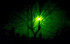green night (hotblack_desiato87) Tags: moon tree verde green night luna experimentation albero notte gazzada