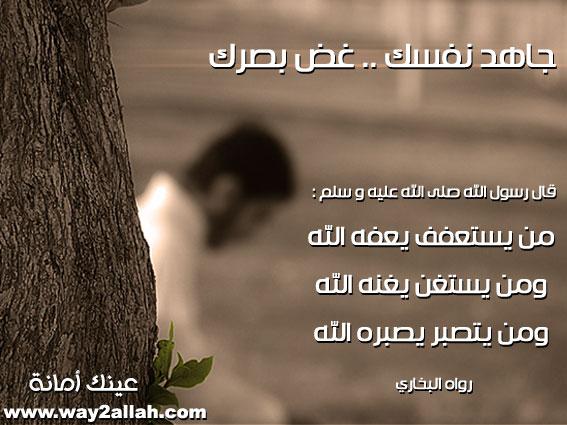 حملة عينك أمانة فحافظي عليها لاتوردك المهالك بالصور 3488958691_fd8bd4df91_o.jpg