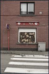 SAXONIA (ajurgenowski) Tags: abandoned belgium belgique demolition abriss verlassen expansion flanders belgien doel vlaanderen flandern beveren abbruch portofantwerp banish castout vertreiben vertreibung hafenerweiterung