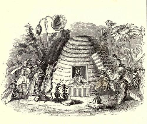 005-Los abejorros y las moscas de la miel-Fabulas La Fontaine-J.Grandvillel