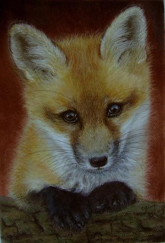 fox sad
