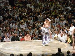 日馬富士 画像75