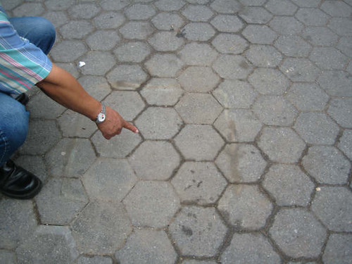 Mayo,27, 2009 Remueven el Che de Central Park.NY. 007(2)