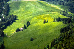 Beautiful World (ceca67) Tags: mountain alps green nature forest spring fields ohhh photoqueen impressedbeauty visiongroup theunforgettablepictures concordians theunforgettablephotographer spiritofphotography saariysqualitypictures worldclassnaturephoto yourwonderland todaysbest