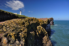 The cliffs at Tod Head, Aberdeenshire (iancowe) Tags: sea cliff lighthouse point aberdeenshire head north cliffs stevenson tod stonehaven mearns todhead catterline kinneff mywinners wbnawgbsct