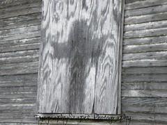 Church (Naturally Forgotten Photography) Tags: abandoned oklahoma church abandonedoklahoma decay urbex oklahomaurbex blackandwhite