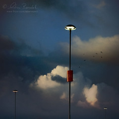dark and peaceful () Tags: sky andy birds clouds contrast nuvole andrea andrew uccelli cielo lightposts lampioni contrasto benedetti 35mmf18 nikond90