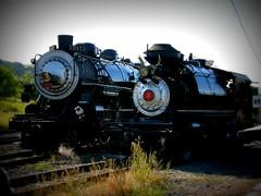 SP 2472 and The Robert Dollar No. 3 (sharkzan) Tags: trains historic steam sp locomotive meet pleasanton picnik railroads southernpacific sunol railfanning nilescanyonrailway southernpacificlines up844 ggrm sp2472 robertdollarno3 cphearst