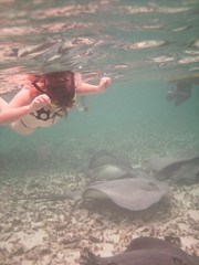 Jo And The Stingrays