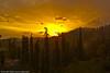 Beautiful Sunset (M.Omair) Tags: trees pakistan sunset sun mountains beautiful beauty yellow clouds amazing nikon colours north deep upnorth omair lightroom nathiagali d40 aplusphoto virgomair