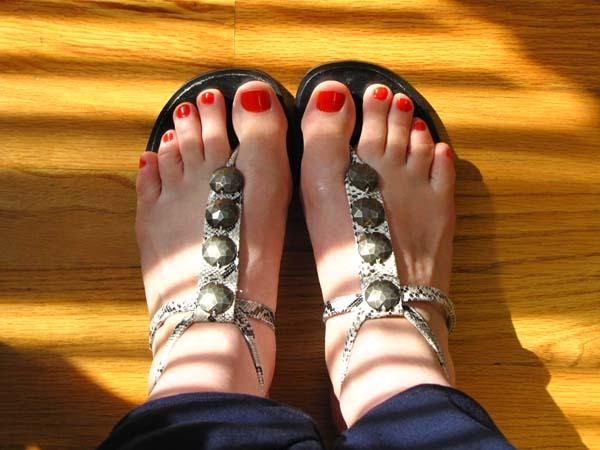 snake sandals 6-24