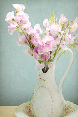 Sweet Peas from Sharon (Peggy Collins) Tags: pink flowers stilllife texture interestingness pretty antique victorian bowl explore nostalgia pastels vase nostalgic romantic wildflowers bouquet pitcher textured gettyimages oldfashioned sweetpeas flowersinvase pastelflowers imagepoetry visiongroup memoriesbook fleursetnature peggycollins florabellatextures