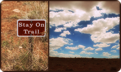 Stay on the Trail!