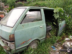 Abandoned Van With Vines Growing
