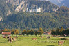 19-Lands below Neuschwanstein Castle