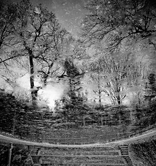 Stairway to Heaven ((reizen)) Tags: ice water stairs dc washington pond heaven district magic donkey columbia stairway explore astral celestial stairwaytoheaven astrolabe wallacestevens reizen dumbartonoaks cassiopeia fav10 ixtlan ccopyrightallrightsreserved notexturesorlayers